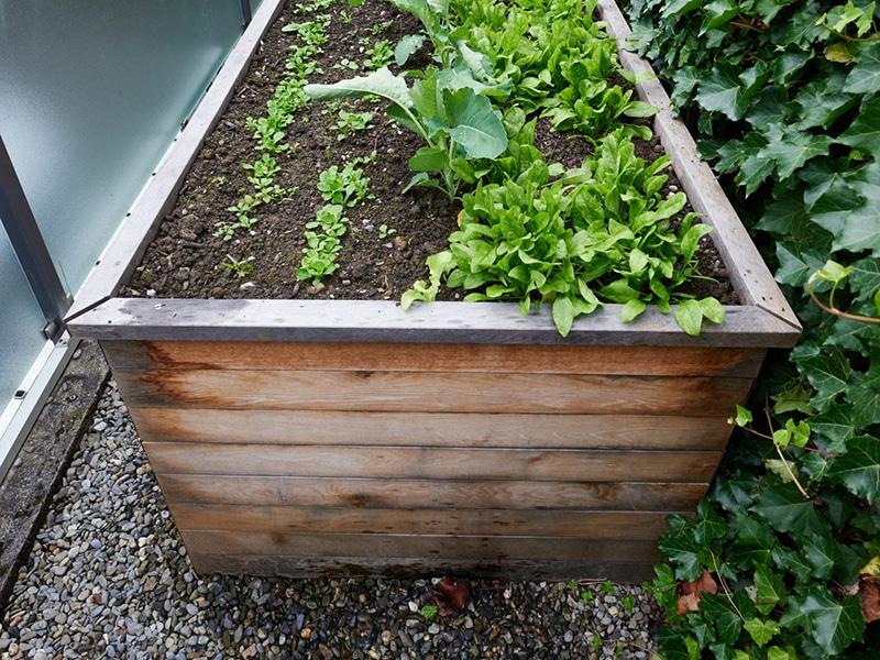 Truttmann Holzprofis Gartenmöbel